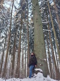 Anlehnen an Baumstamm