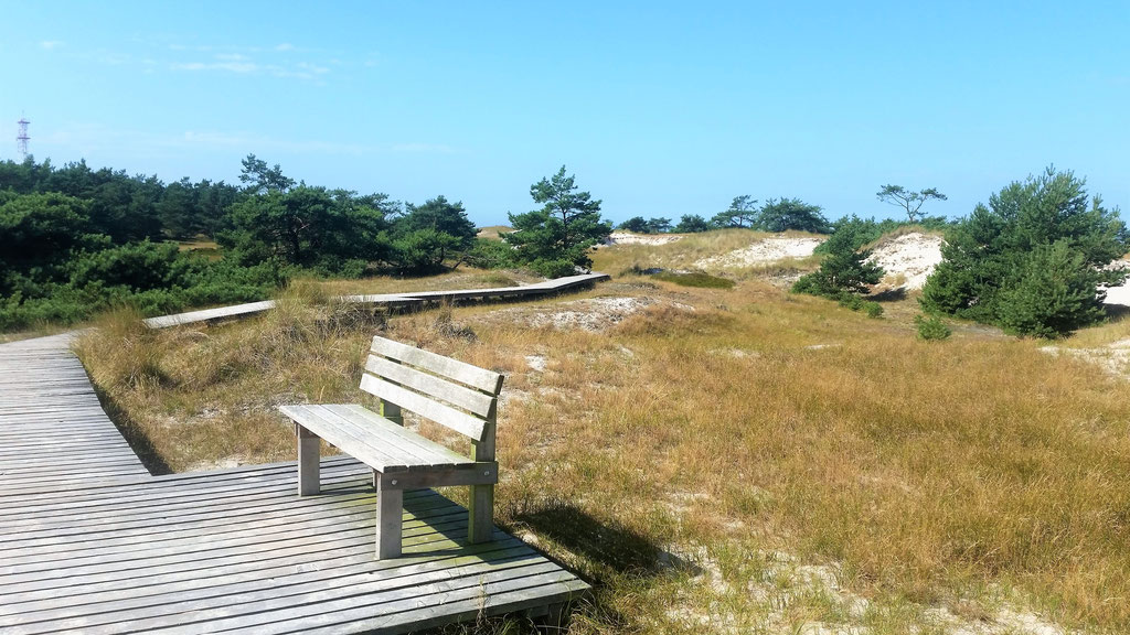Wandern an der Ostsee in der Natur