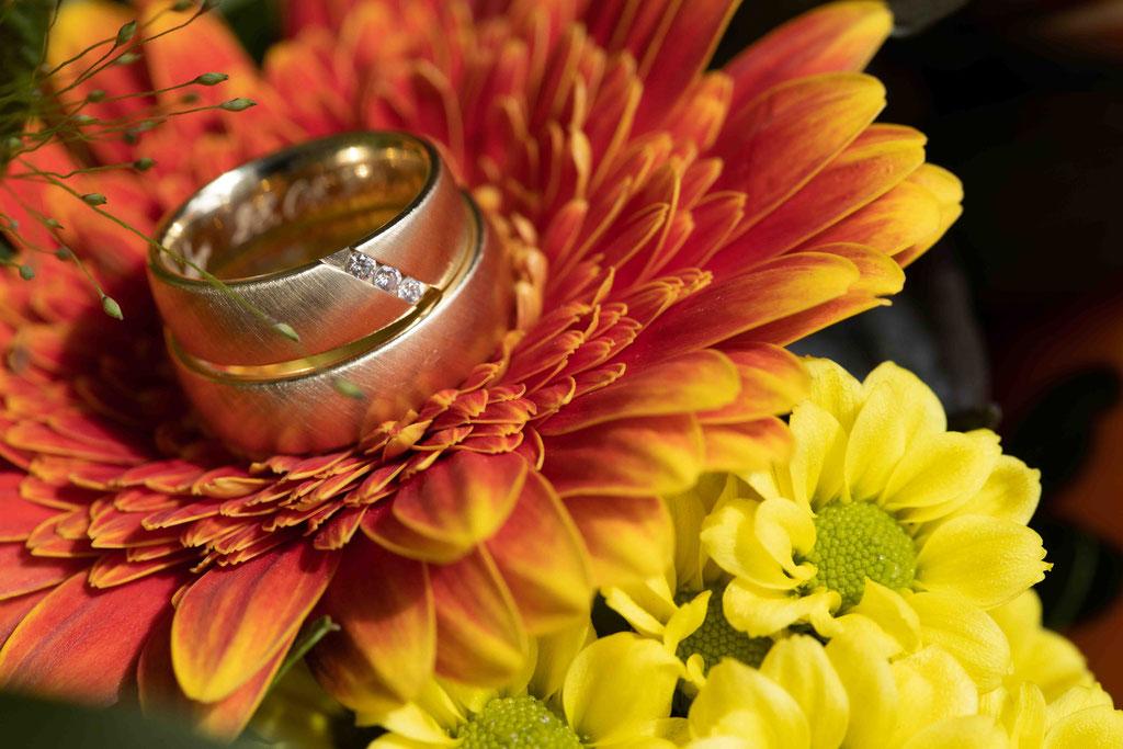 Eheringe, Hochzeitsringe, Hochzeitslocation Hochzeit feiern Weingut Schloss Reinhartshausen, Hauptstraße 39, 65346 Eltville am Rhein, Hochzeitsfotograf,