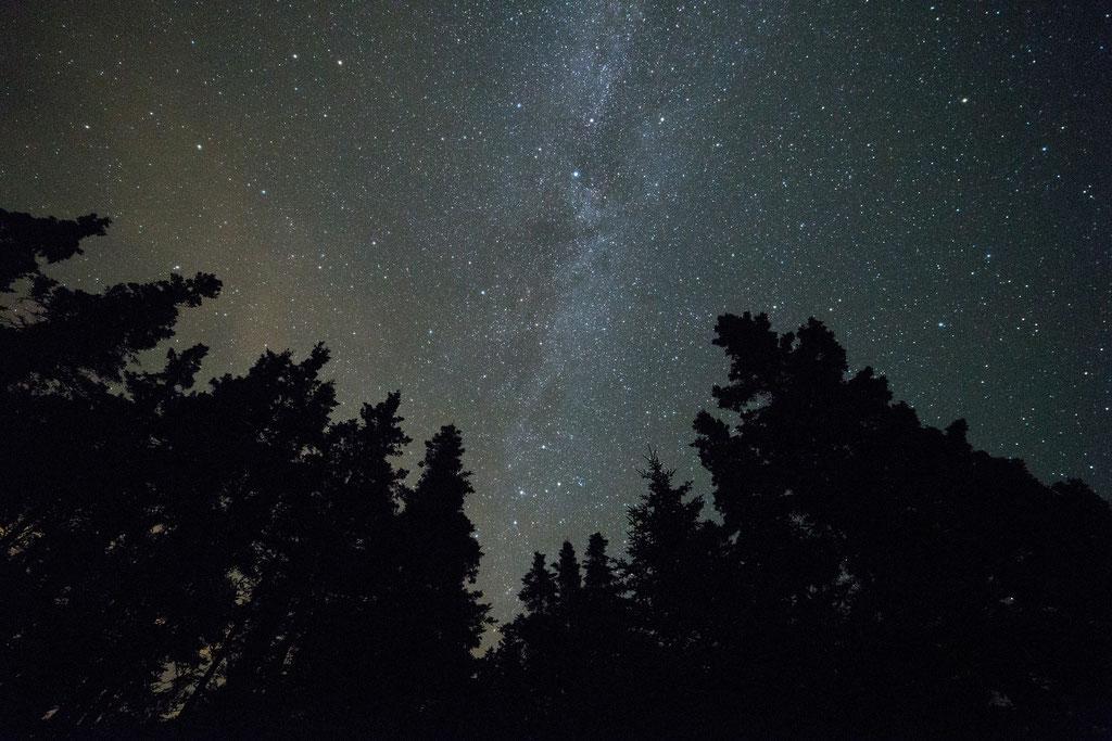 Sternschnuppen suchen..