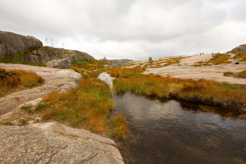 Wanderung_Preikestolen_Norwegen_Hund_Wohnmobil