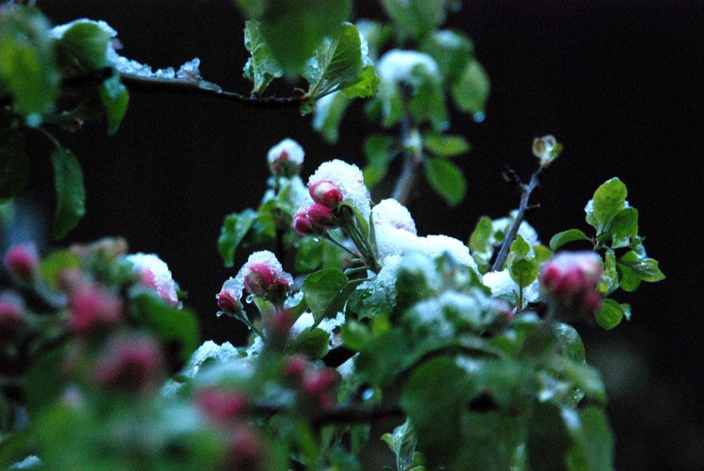 Kaltes Erwachen