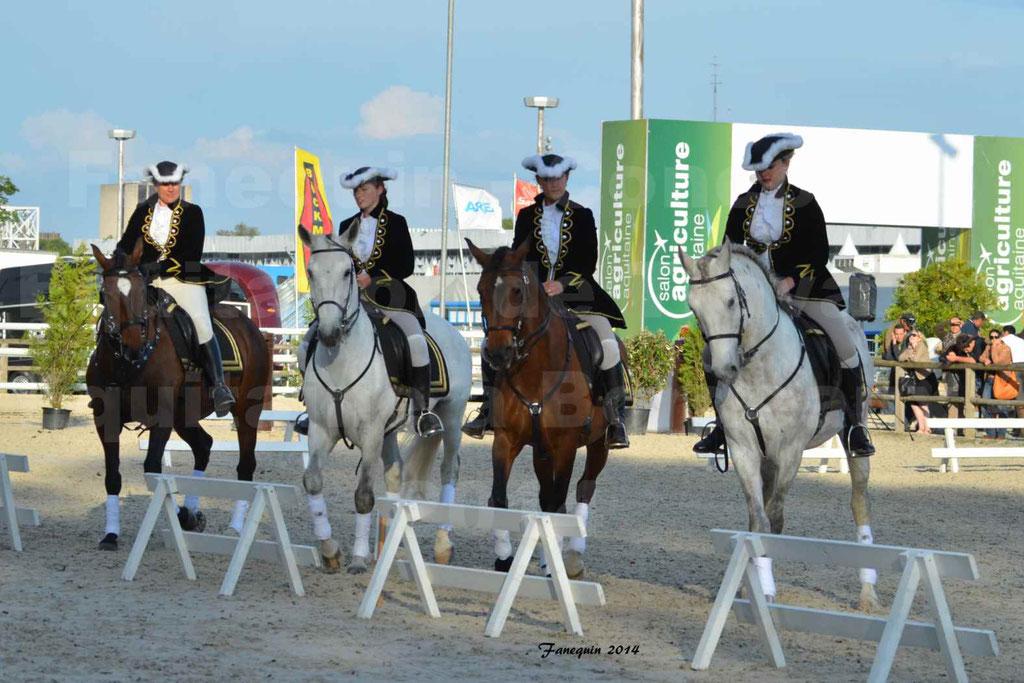 """Carrousel de cavalières Equitation de travail lors du salon """"Equitaine"""" à Bordeaux en 2014 - 15"""