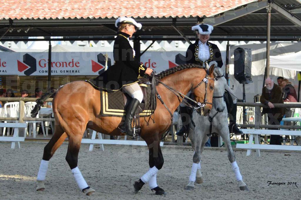 """Carrousel de cavalières Equitation de travail lors du salon """"Equitaine"""" à Bordeaux en 2014 - 09"""
