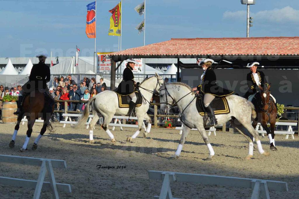 """Carrousel de cavalières Equitation de travail lors du salon """"Equitaine"""" à Bordeaux en 2014 - 51"""