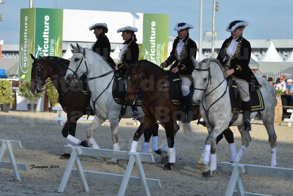 """Carrousel de cavalières Equitation de travail lors du salon """"Equitaine"""" à Bordeaux en 2014 - 35"""