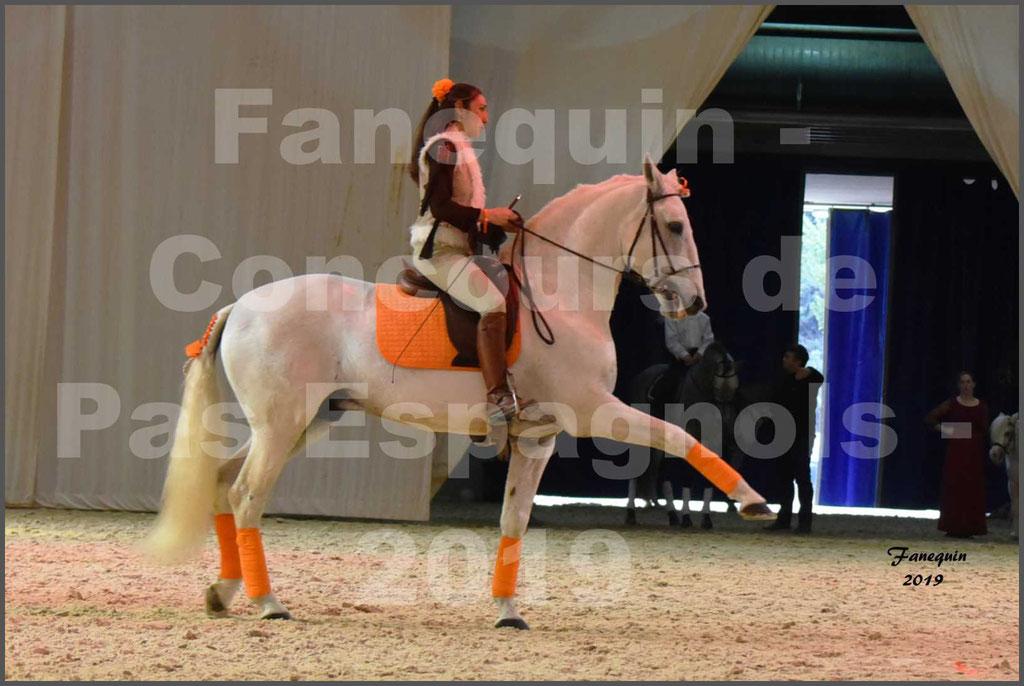 """Cheval Passion 2019 - Concours de Pas Espagnol - Étalon """"ZIDANE"""" - 42"""