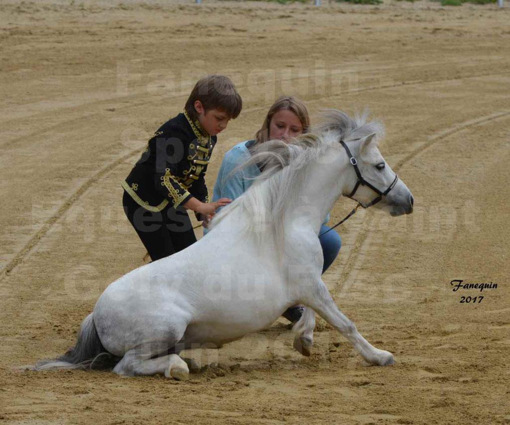 Spectacle Équestre - Salon Pêche Chasse Nature à Saint Gely du Fesc - Jeune garçon et poney - 2