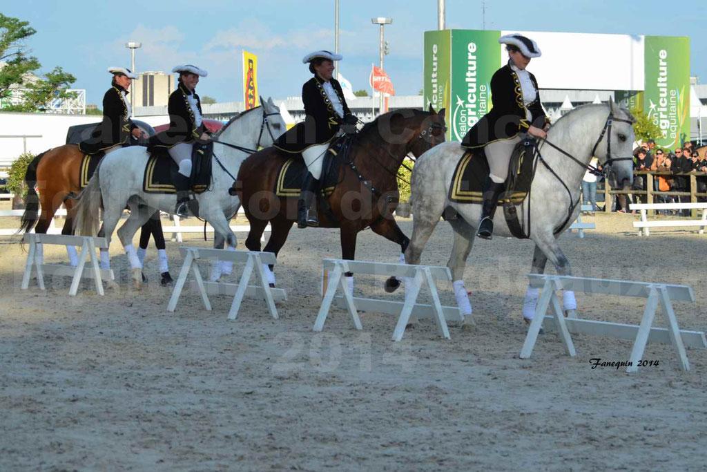 """Carrousel de cavalières Equitation de travail lors du salon """"Equitaine"""" à Bordeaux en 2014 - 61"""