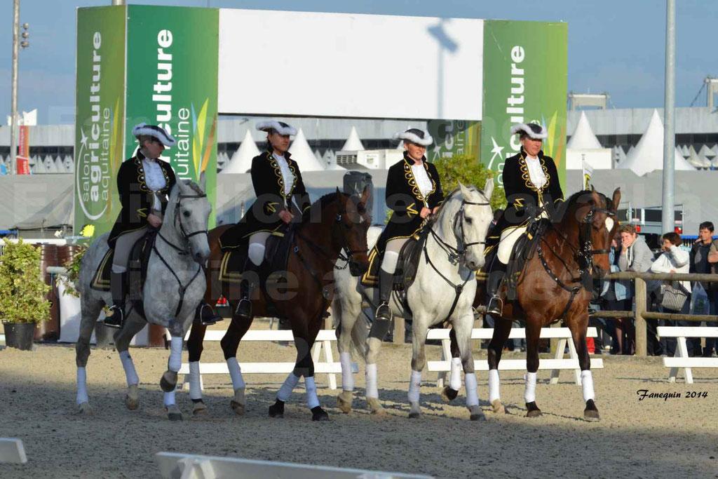 """Carrousel de cavalières Equitation de travail lors du salon """"Equitaine"""" à Bordeaux en 2014 - 01"""