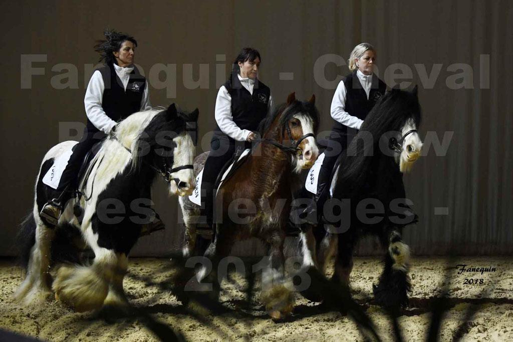 Cheval Passion 2018 - Show des élevages - Chevaux IRISH COB