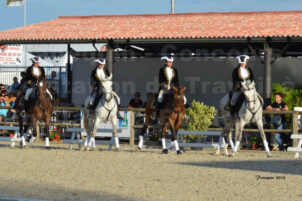 """Carrousel de cavalières Equitation de travail lors du salon """"Equitaine"""" à Bordeaux en 2014 - 13"""