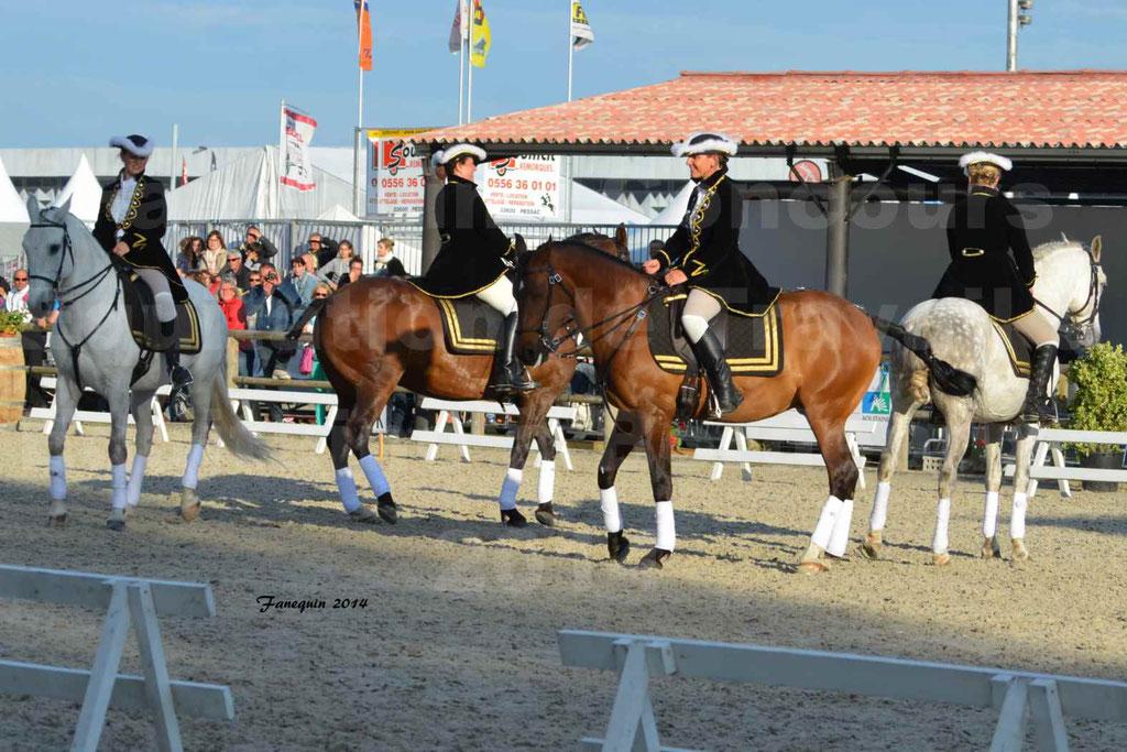 """Carrousel de cavalières Equitation de travail lors du salon """"Equitaine"""" à Bordeaux en 2014 - 37"""