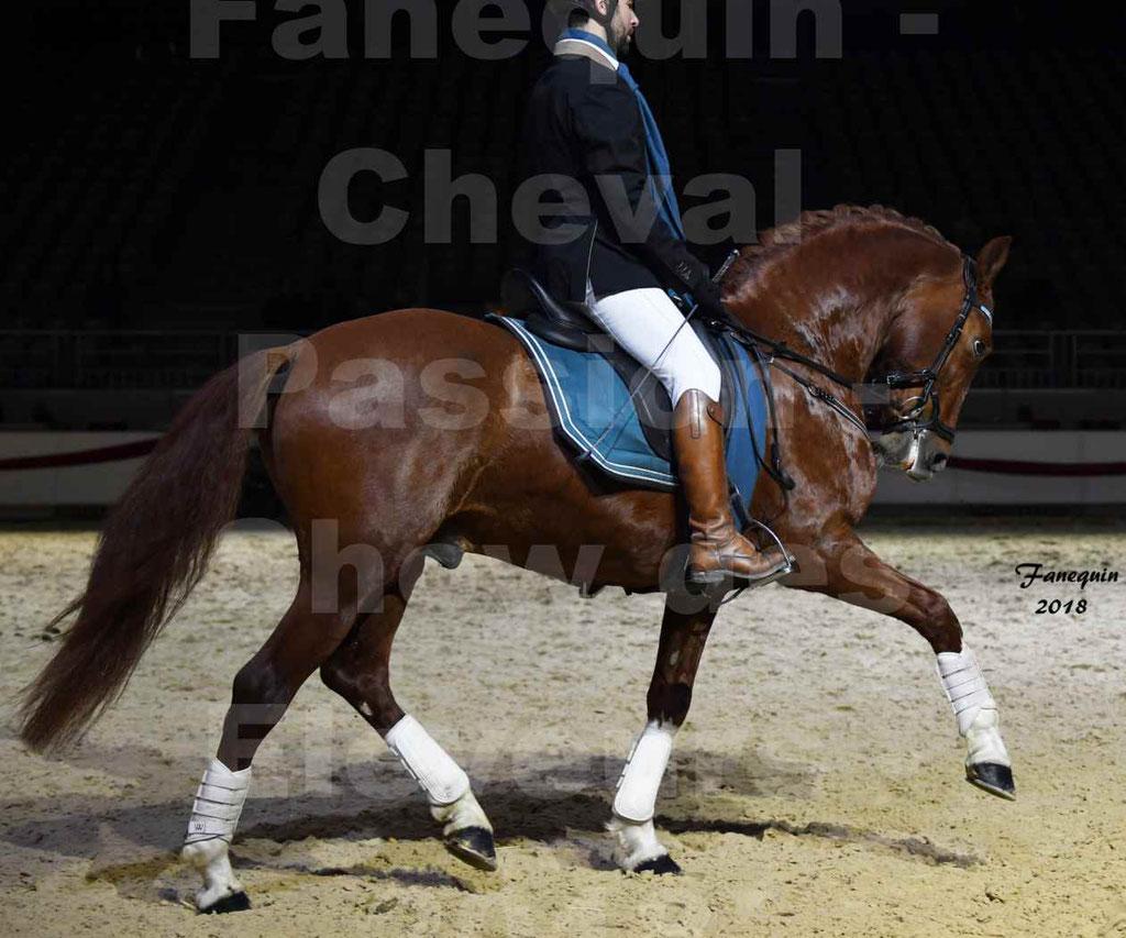 Cheval passion 2018 - Show des éleveurs - Chevaux ESPAGNOL - 2
