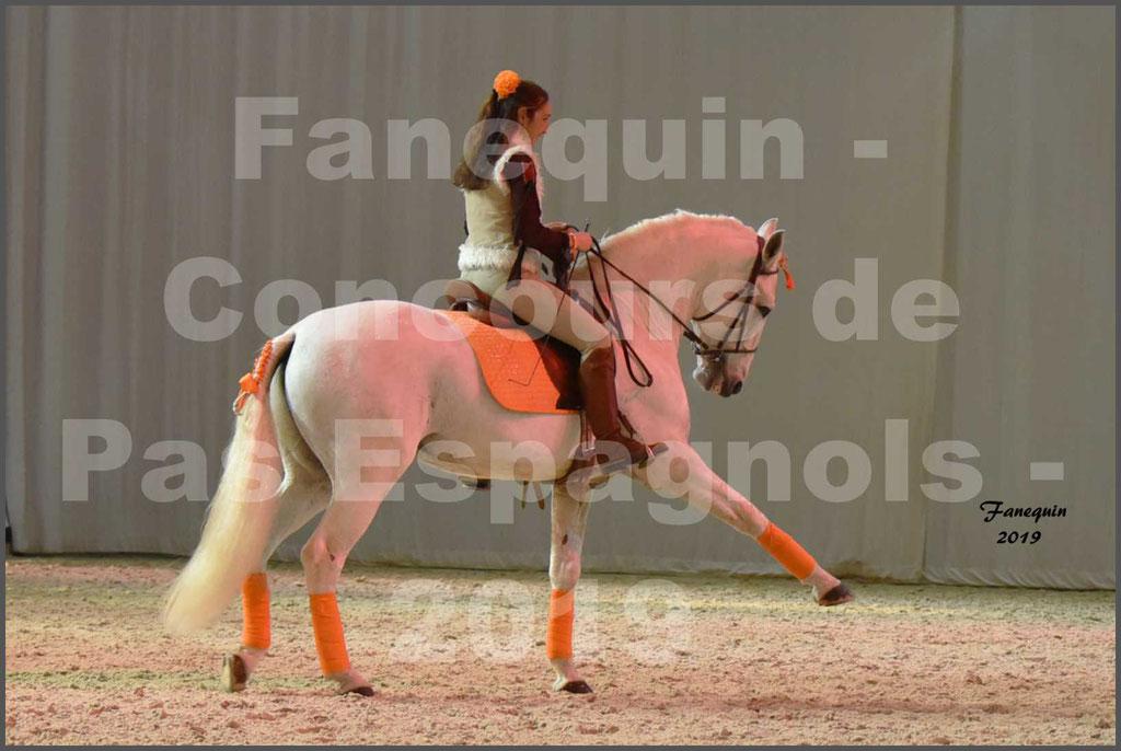 """Cheval Passion 2019 - Concours de Pas Espagnol - Étalon """"ZIDANE"""" - 38"""