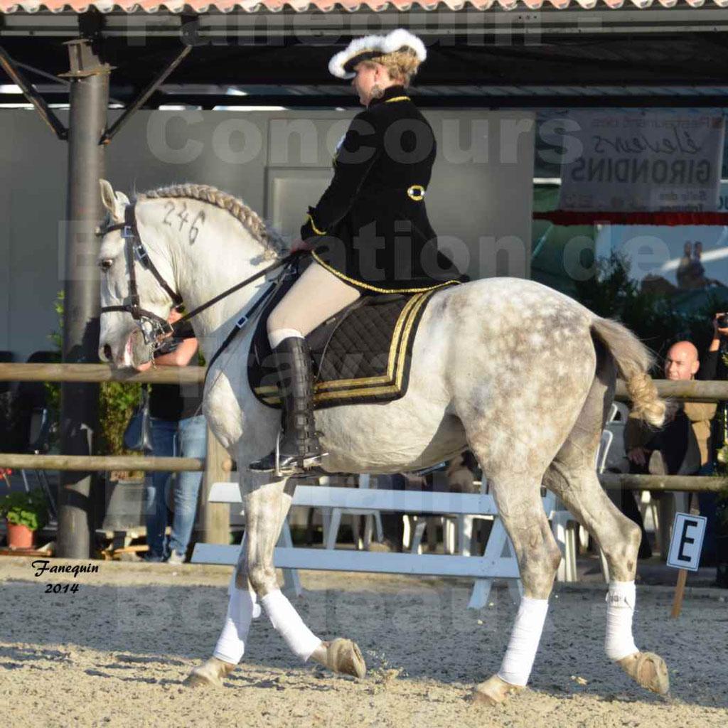 """Carrousel de cavalières Equitation de travail lors du salon """"Equitaine"""" à Bordeaux en 2014 - 62"""