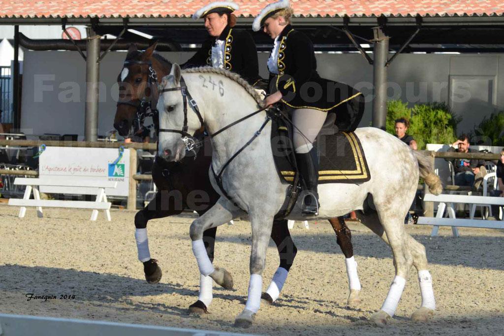 """Carrousel de cavalières Equitation de travail lors du salon """"Equitaine"""" à Bordeaux en 2014 - 45"""