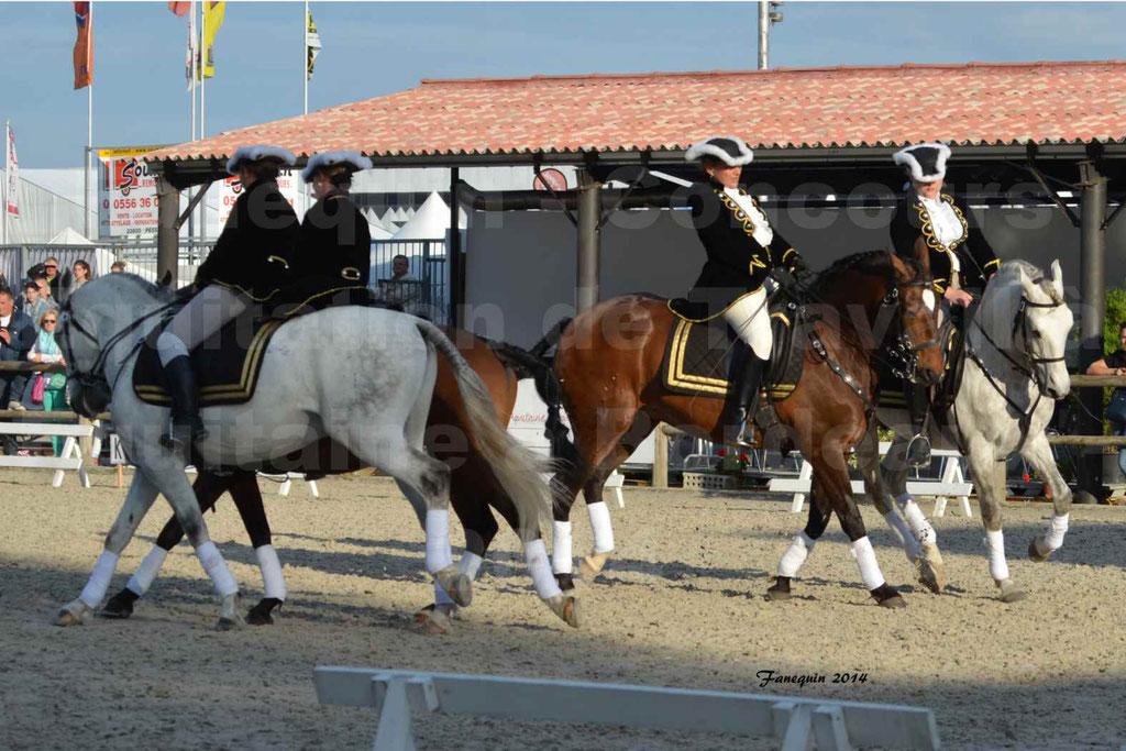 """Carrousel de cavalières Equitation de travail lors du salon """"Equitaine"""" à Bordeaux en 2014 - 44"""