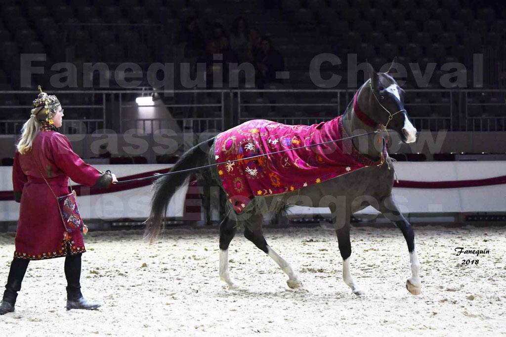 Cheval Passion 2018 - Show des élevages - AKHAL TEKE