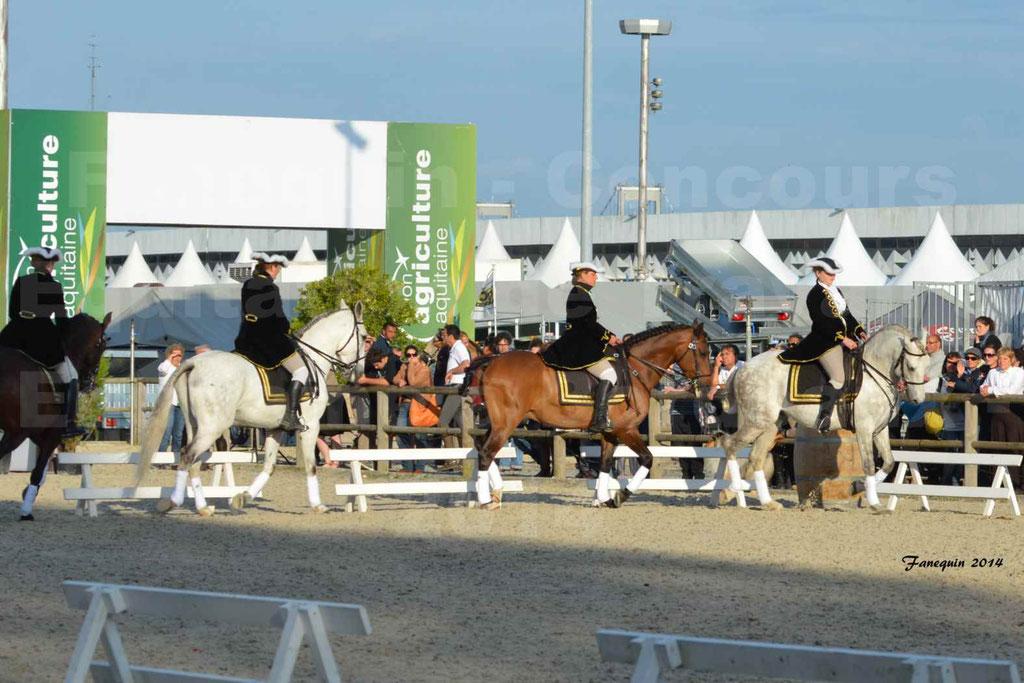 """Carrousel de cavalières Equitation de travail lors du salon """"Equitaine"""" à Bordeaux en 2014 - 11"""
