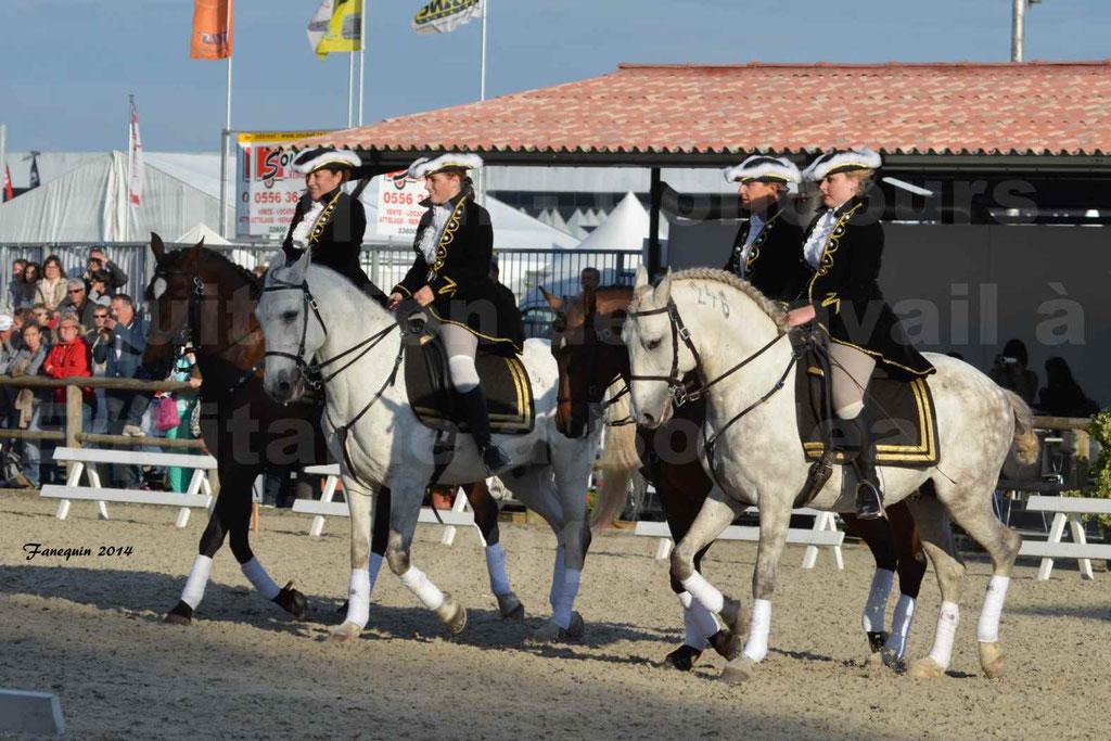 """Carrousel de cavalières Equitation de travail lors du salon """"Equitaine"""" à Bordeaux en 2014 - 33"""