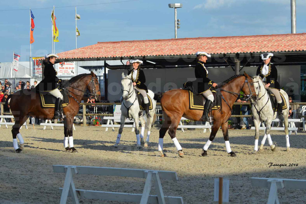 """Carrousel de cavalières Equitation de travail lors du salon """"Equitaine"""" à Bordeaux en 2014 - 08"""