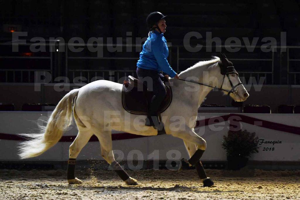 Cheval Passion 2018 - Show des élevages - Cheval CONNEMARA