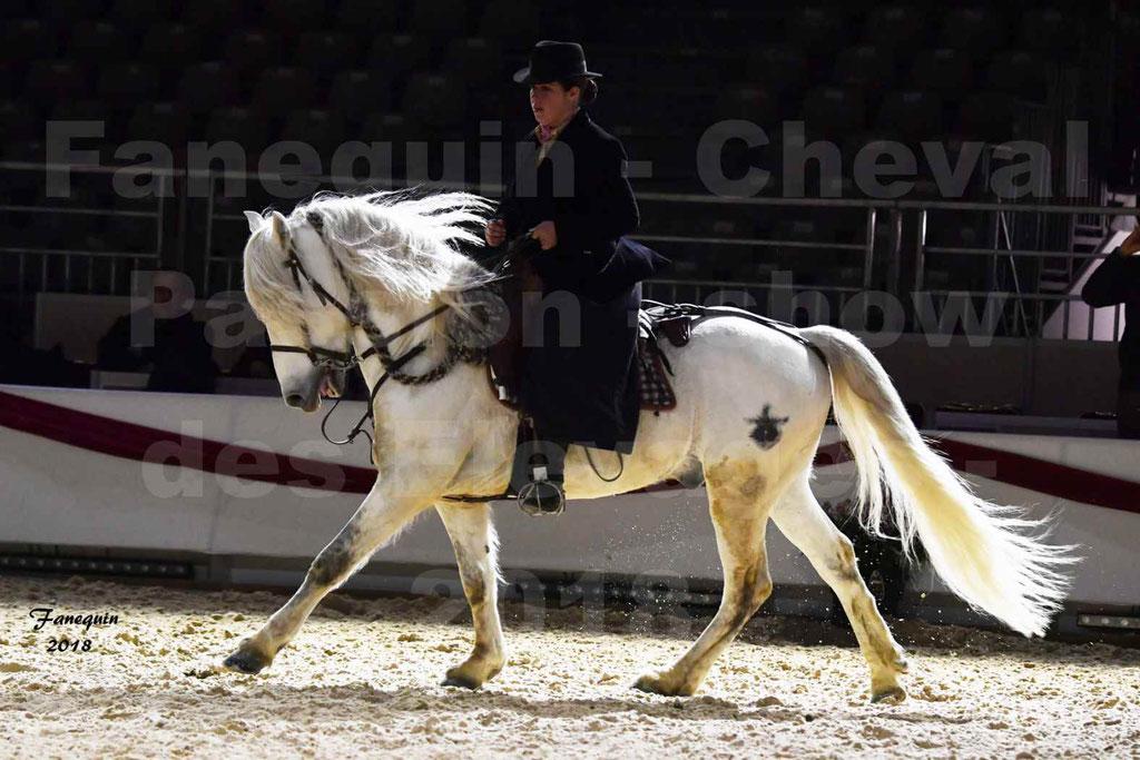 Cheval Passion 2018 - Show des élevages - Cheval CAMARGUE