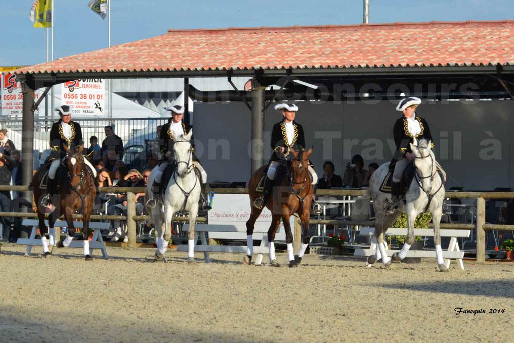 """Carrousel de cavalières Equitation de travail lors du salon """"Equitaine"""" à Bordeaux en 2014 - 12"""