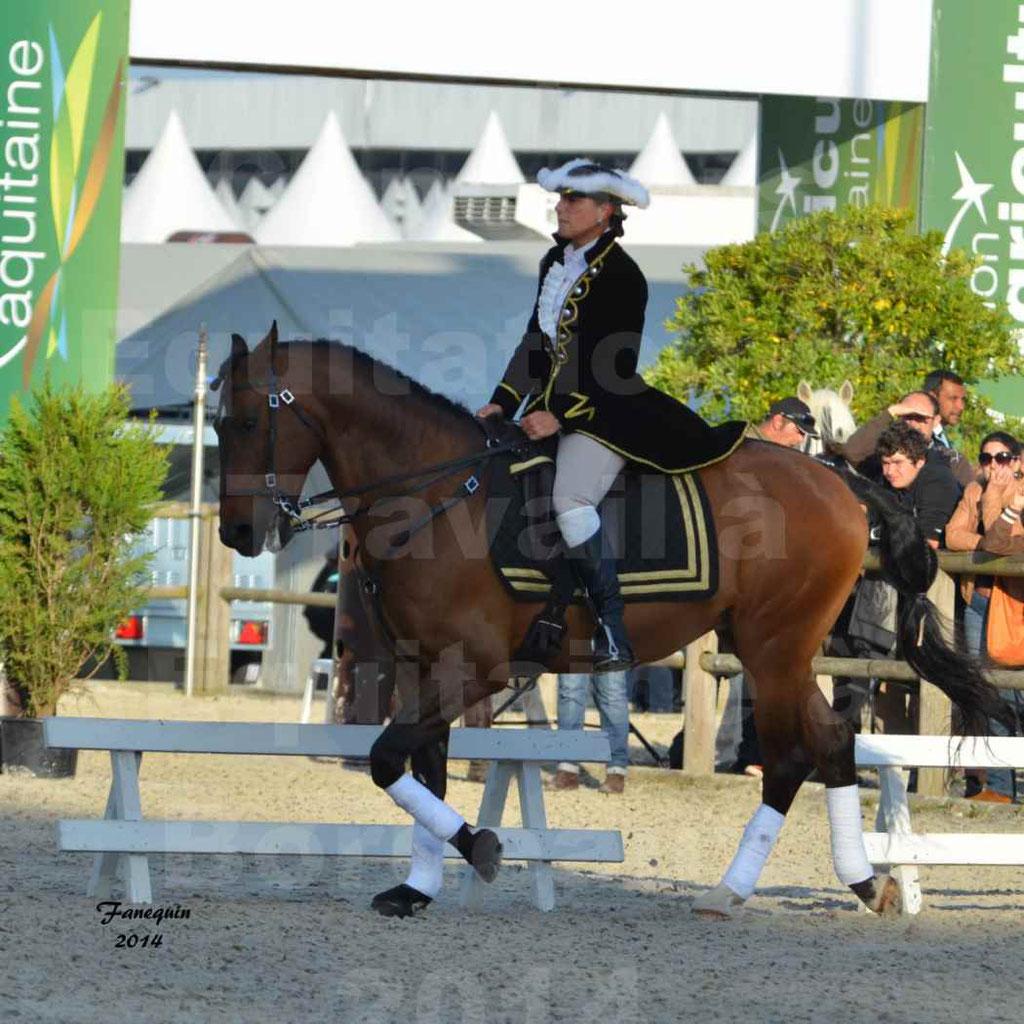 """Carrousel de cavalières Equitation de travail lors du salon """"Equitaine"""" à Bordeaux en 2014 - 58"""