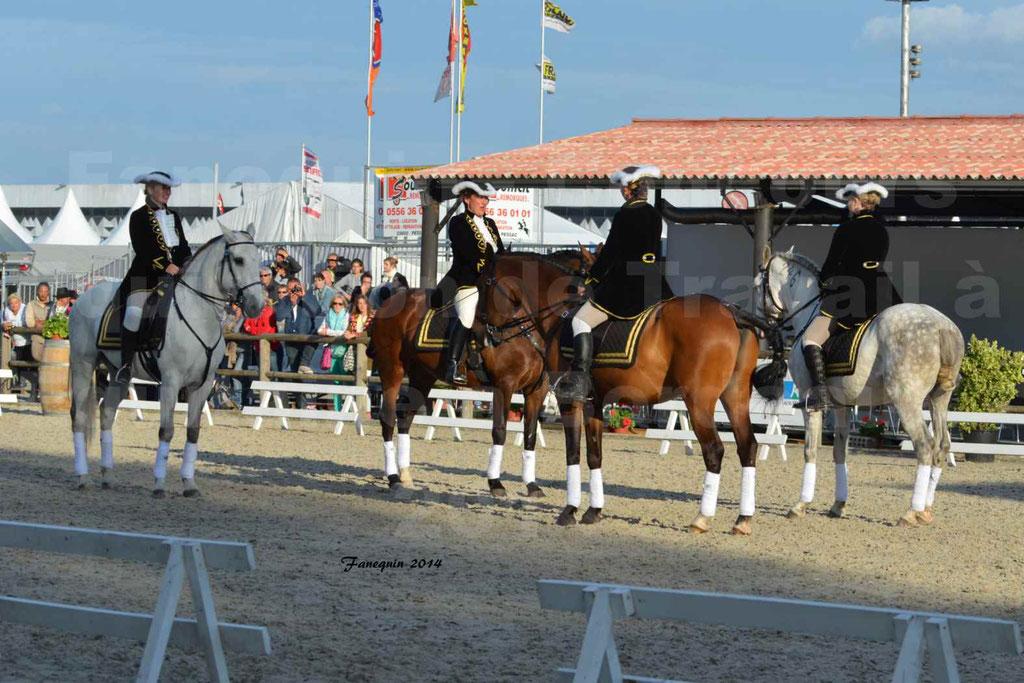 """Carrousel de cavalières Equitation de travail lors du salon """"Equitaine"""" à Bordeaux en 2014 - 36"""