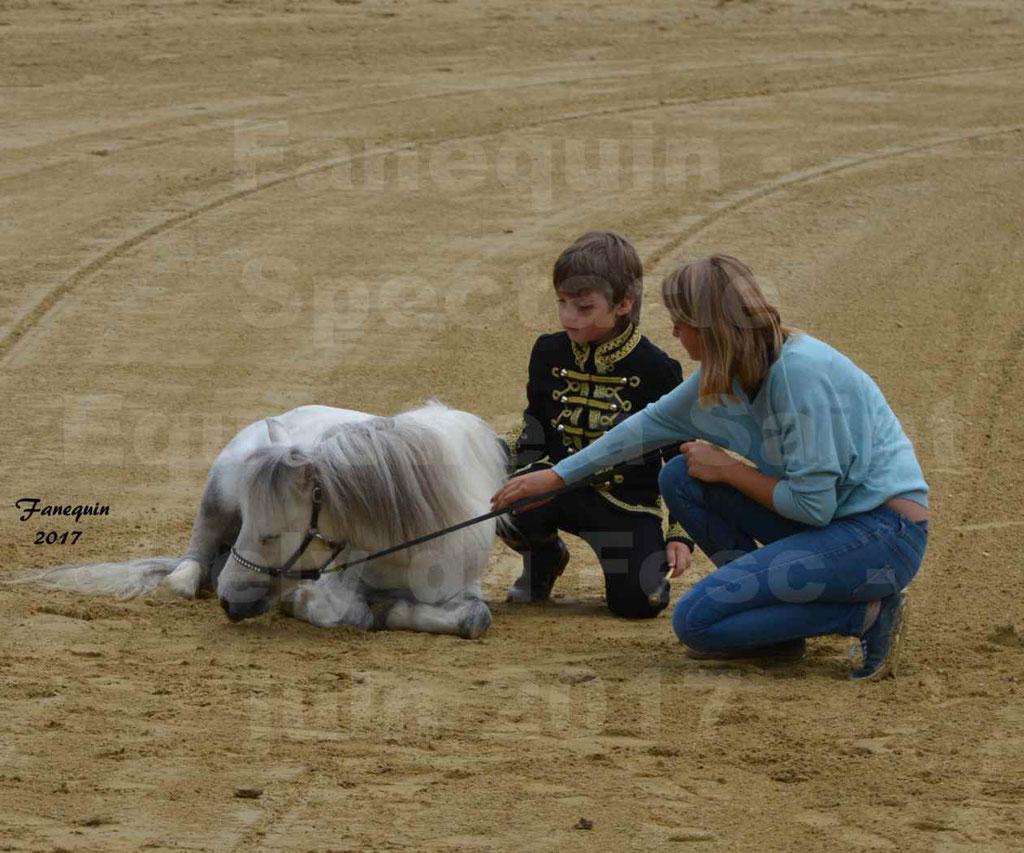 Spectacle Équestre - Salon Pêche Chasse Nature à Saint Gely du Fesc - Jeune garçon et poney - 1