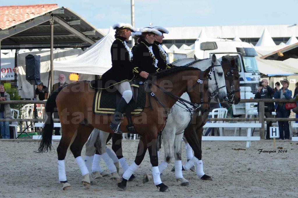 """Carrousel de cavalières Equitation de travail lors du salon """"Equitaine"""" à Bordeaux en 2014 - 68"""