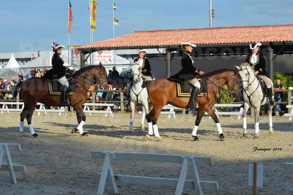"""Carrousel de cavalières Equitation de travail lors du salon """"Equitaine"""" à Bordeaux en 2014 - 07"""