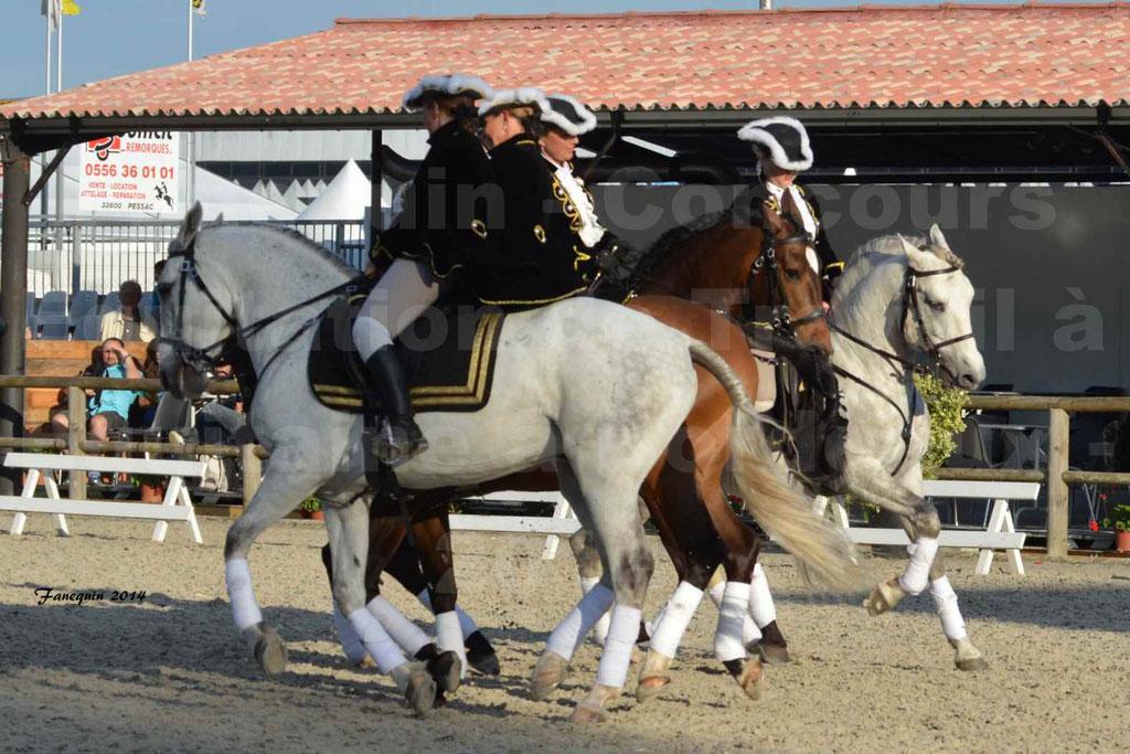 """Carrousel de cavalières Equitation de travail lors du salon """"Equitaine"""" à Bordeaux en 2014 - 43"""