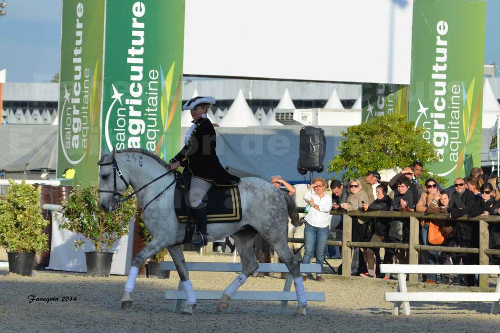 """Carrousel de cavalières Equitation de travail lors du salon """"Equitaine"""" à Bordeaux en 2014 - 55"""