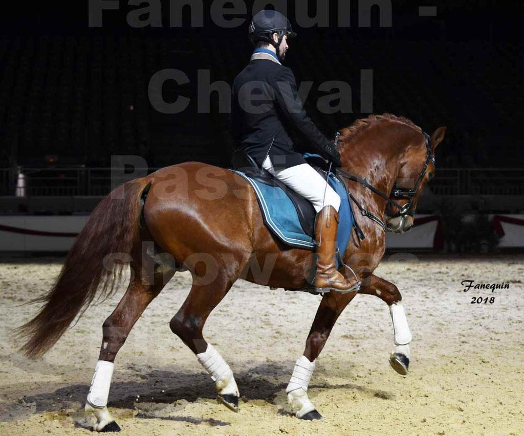 Cheval Passion 2018 - Show des élevages - Cheval ESPAGNOL