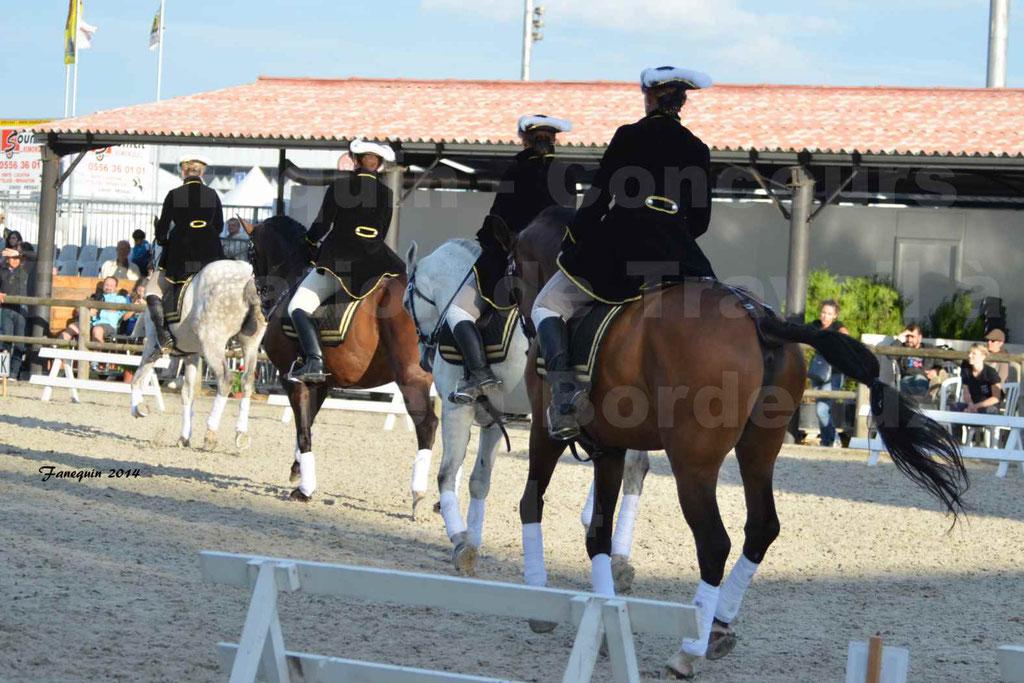"""Carrousel de cavalières Equitation de travail lors du salon """"Equitaine"""" à Bordeaux en 2014 - 54"""