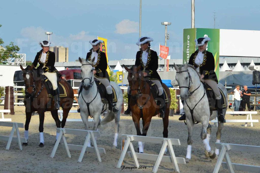 """Carrousel de cavalières Equitation de travail lors du salon """"Equitaine"""" à Bordeaux en 2014 - 14"""