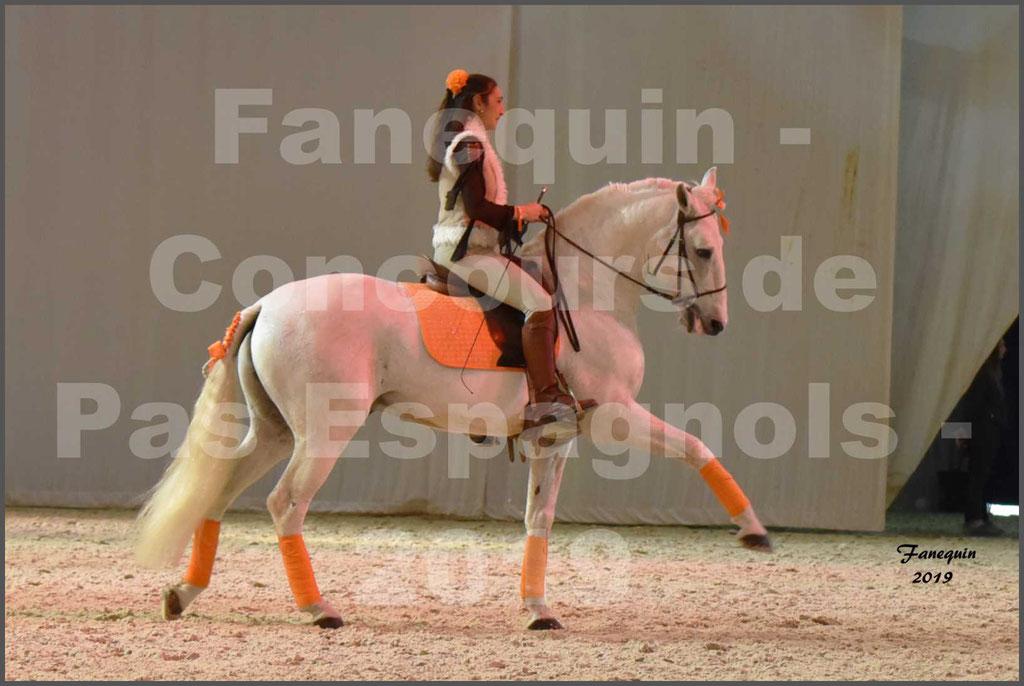 """Cheval Passion 2019 - Concours de Pas Espagnol - Étalon """"ZIDANE"""" - 40"""