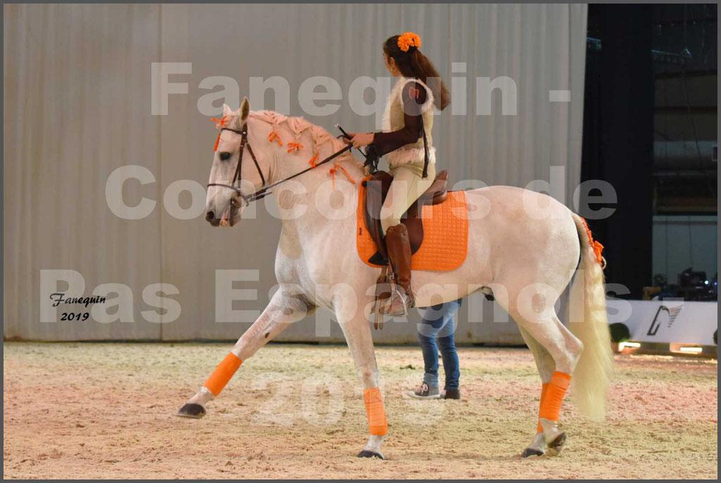 """Cheval Passion 2019 - Concours de Pas Espagnol - Étalon """"ZIDANE"""" - 50"""