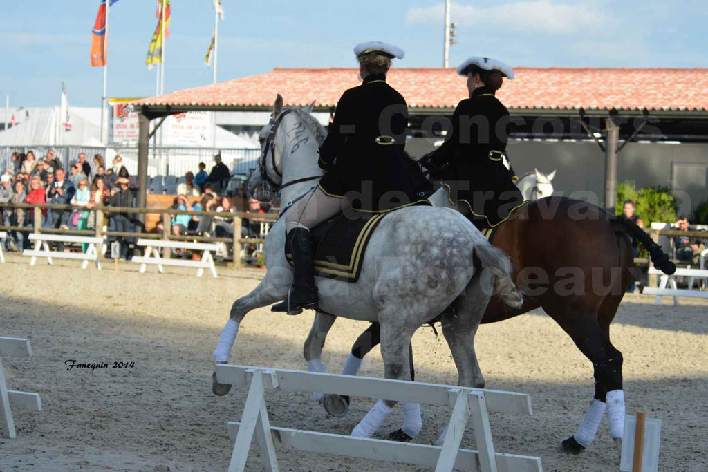 """Carrousel de cavalières Equitation de travail lors du salon """"Equitaine"""" à Bordeaux en 2014 - 40"""