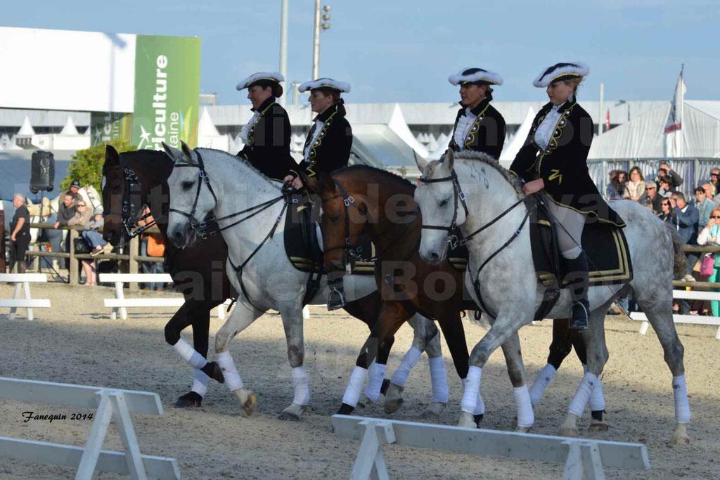 """Carrousel de cavalières Equitation de travail lors du salon """"Equitaine"""" à Bordeaux en 2014 - 34"""