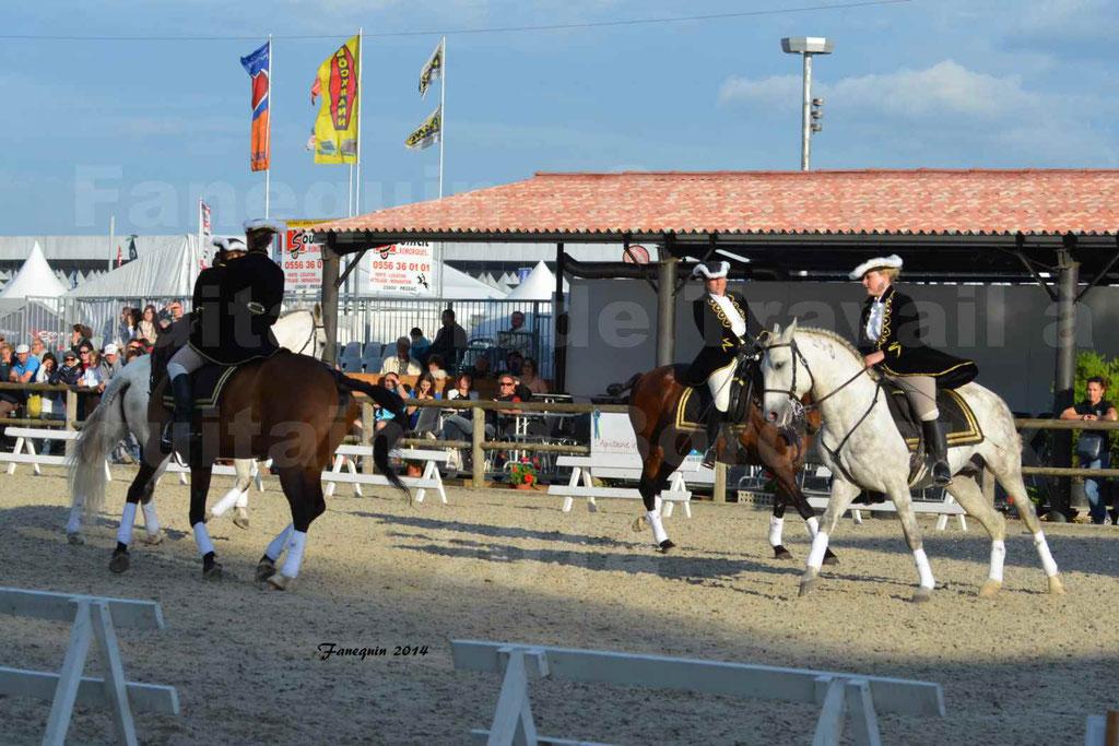 """Carrousel de cavalières Equitation de travail lors du salon """"Equitaine"""" à Bordeaux en 2014 - 50"""