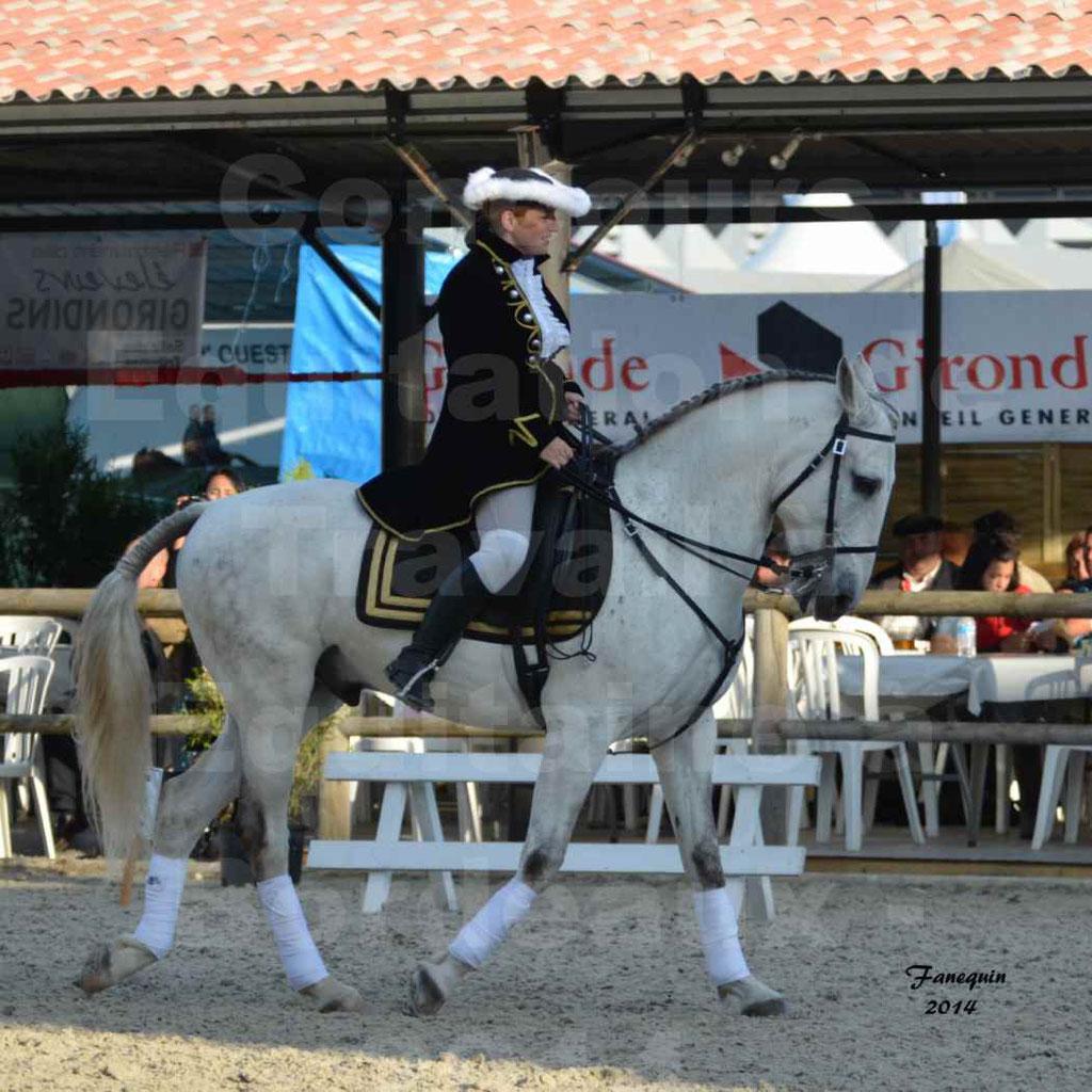 """Carrousel de cavalières Equitation de travail lors du salon """"Equitaine"""" à Bordeaux en 2014 - 25"""