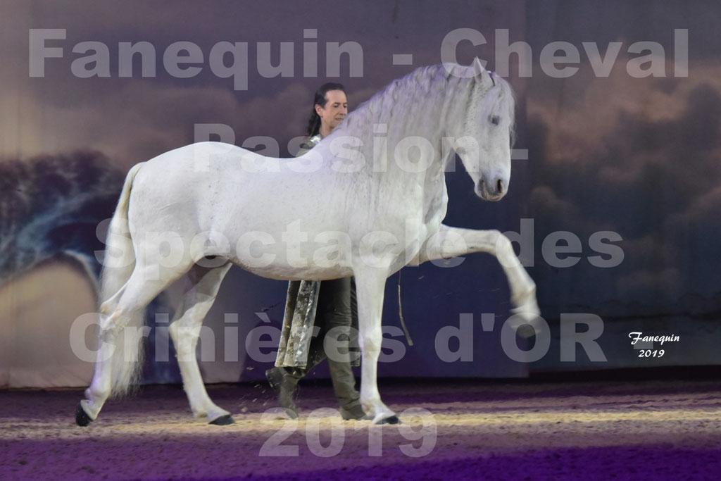 """Cheval Passion 2019 - Spectacle """"Les Crinières d'OR"""" - Frédéric PIGNON - Cheval blanc en liberté"""