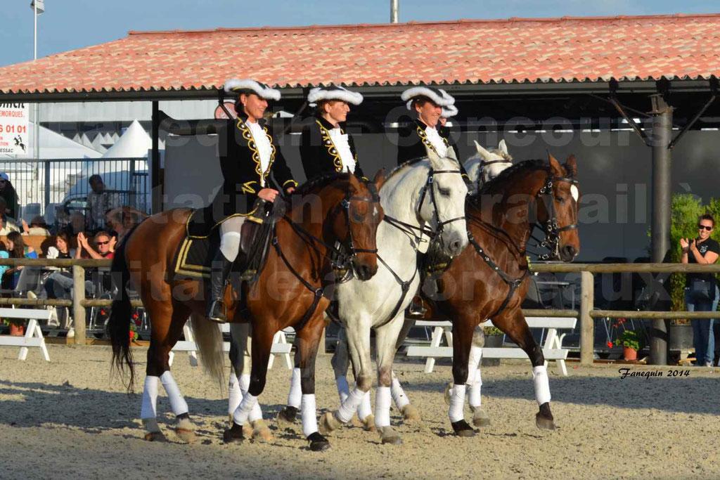 """Carrousel de cavalières Equitation de travail lors du salon """"Equitaine"""" à Bordeaux en 2014 - 66"""