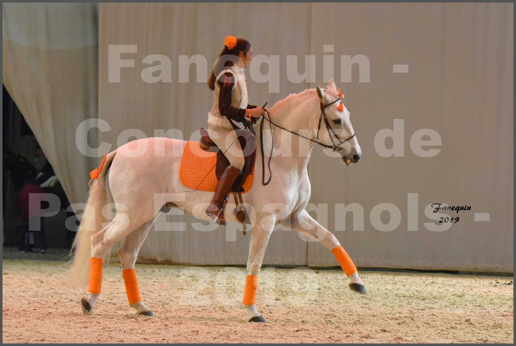 """Cheval Passion 2019 - Concours de Pas Espagnol - Étalon """"ZIDANE"""" - 46"""
