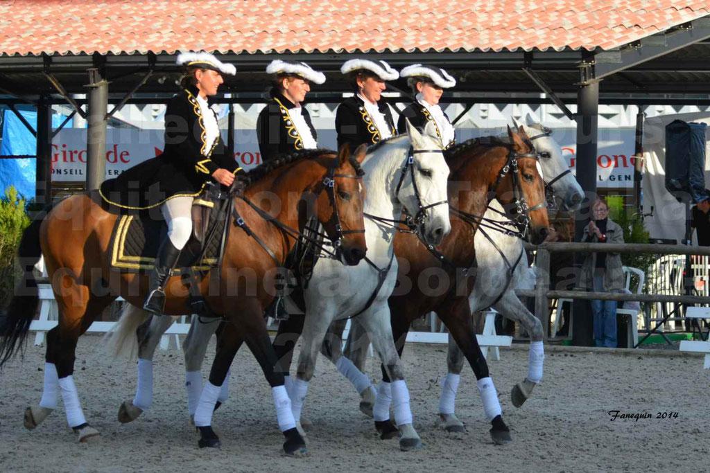 """Carrousel de cavalières Equitation de travail lors du salon """"Equitaine"""" à Bordeaux en 2014 - 67"""