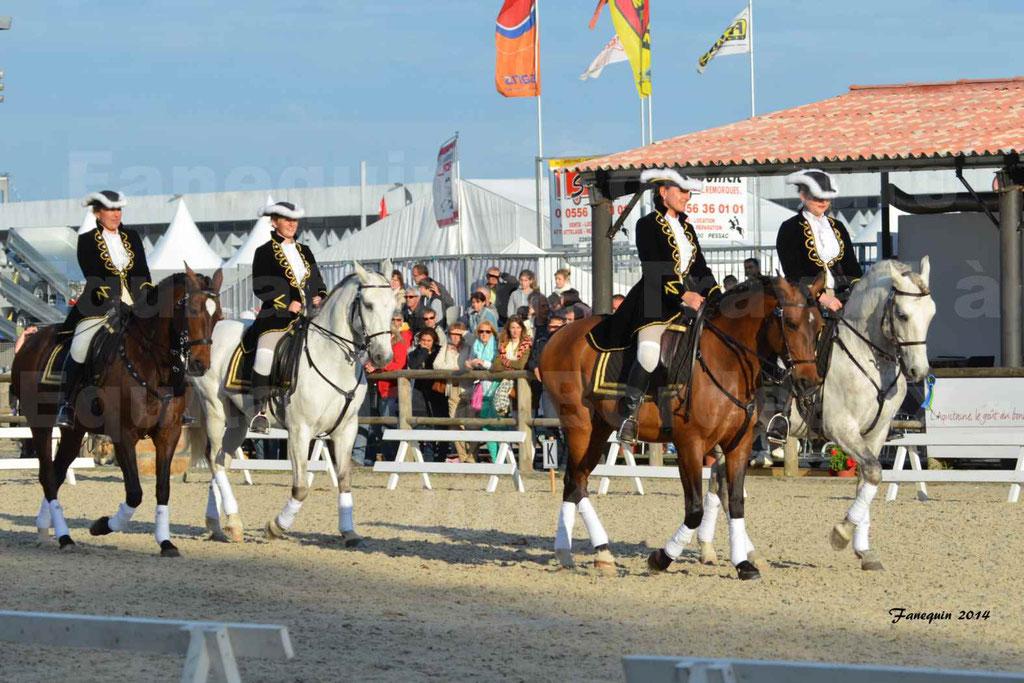 """Carrousel de cavalières Equitation de travail lors du salon """"Equitaine"""" à Bordeaux en 2014 - 04"""